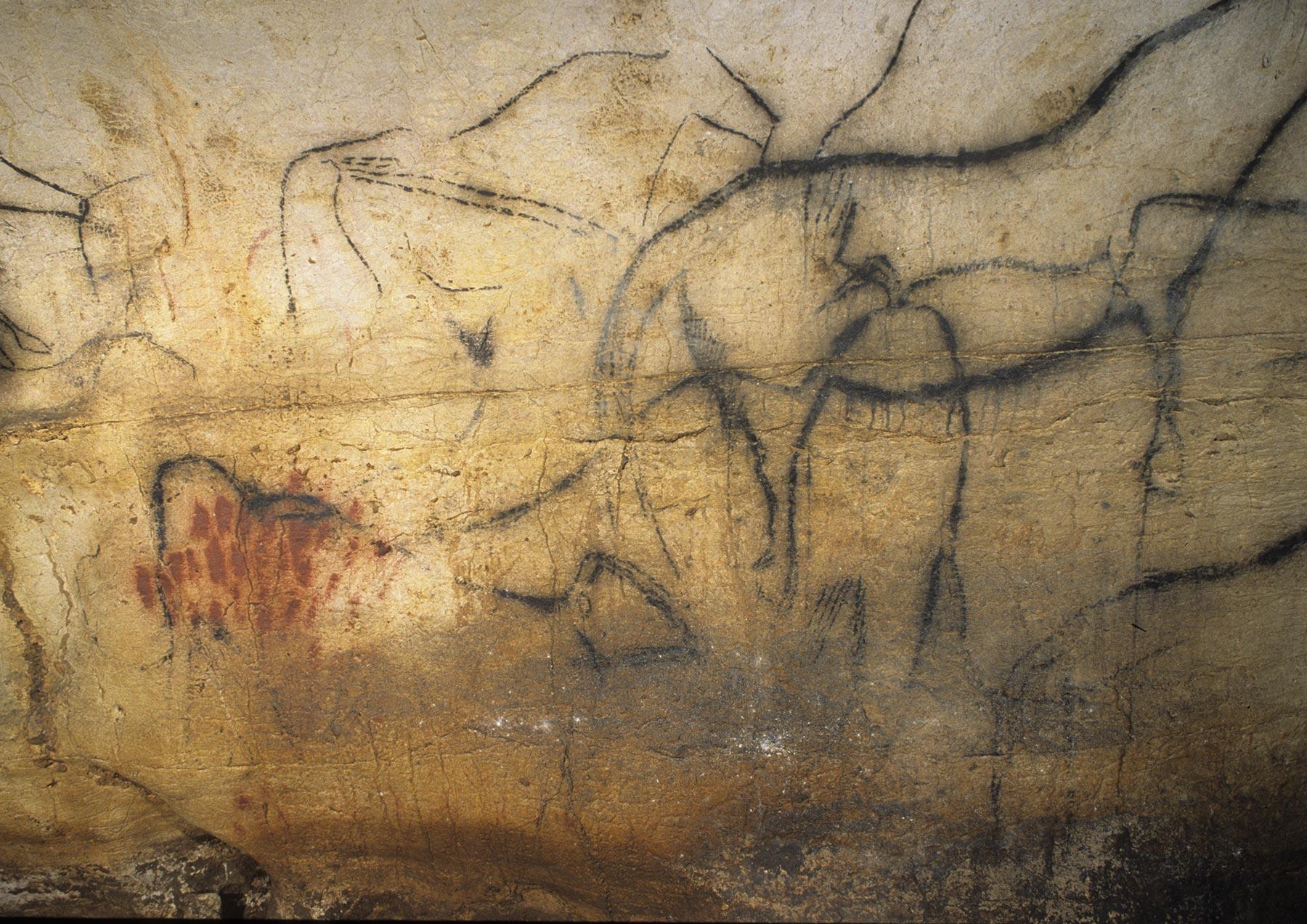peintures-rupestres-murs-grotte-pechmerle-lot